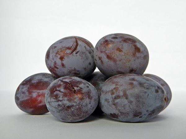 Which Types of Dried Plum in Iran Have More Fans?