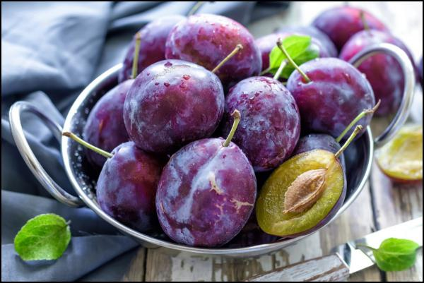 What is the property of European prunes?