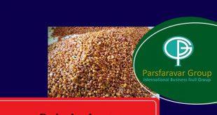 Prunes Price Per Kg